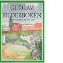 Gudlav Bilderboken : en Sollefteåskola och dess rötter : ett allvarligt försök att beskriva verkligheten - Hasselberg, Staffan