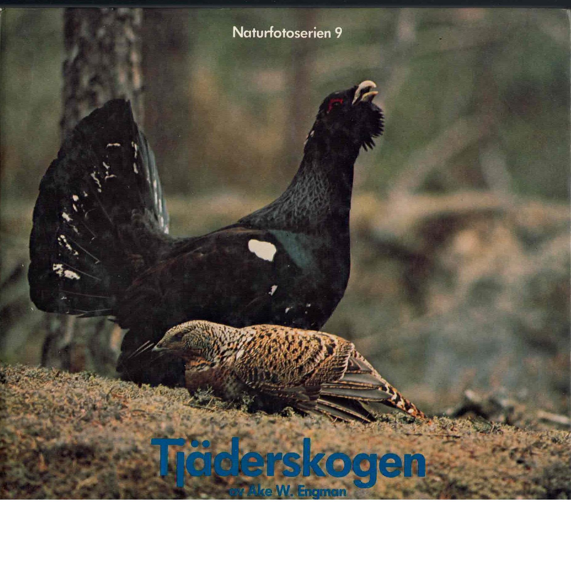Tjäderskogen - Engman, Åke W.