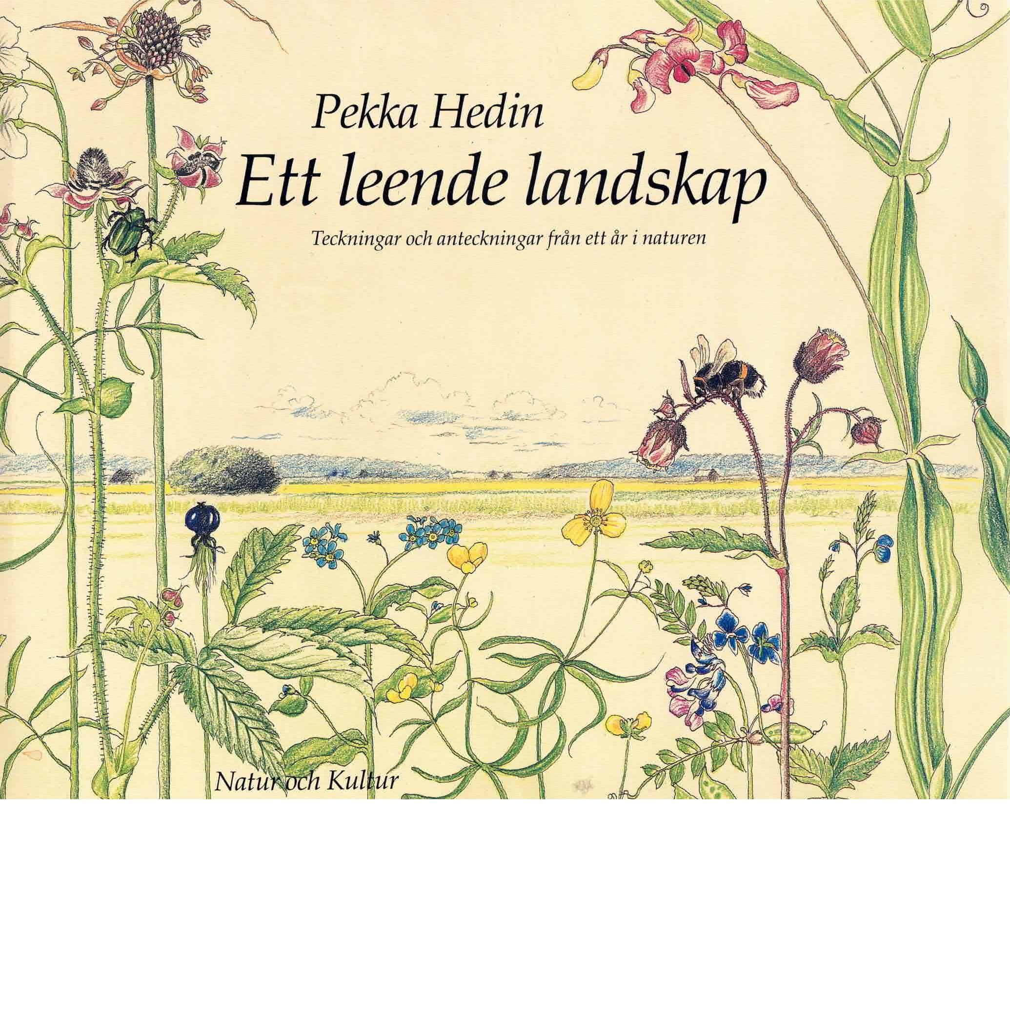 Ett leende landskap : teckningar och anteckningar från ett år i naturen - Hedin, Pekka,