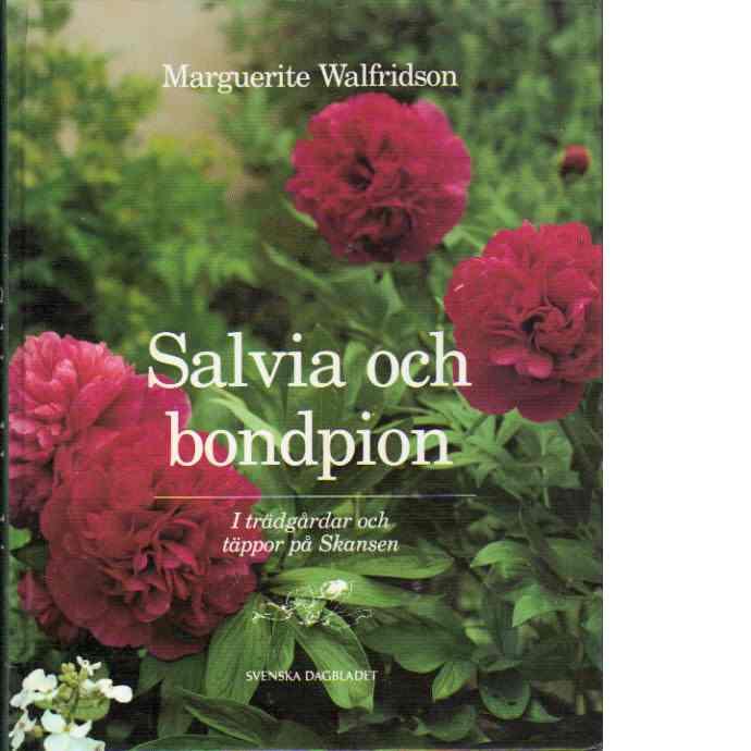 Salvia och bondpion - Walfridson, Marguerite