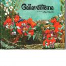 Gallavanterna - Frigell, Kersti och  Shaw, Annie samt Ribalow, Meir Z.