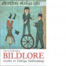 Bildlore : studiet av folkliga bildbudskap - Bringéus, Nils-Arvid