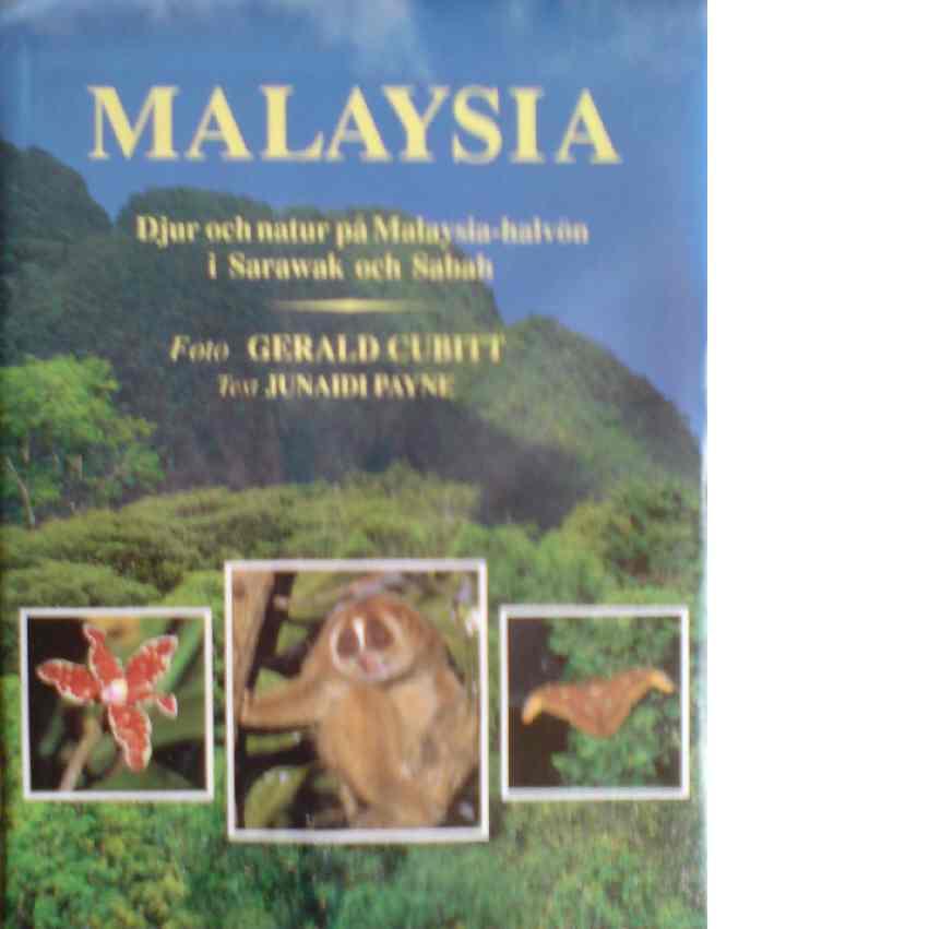 Malaysia - Payne, Junaidi