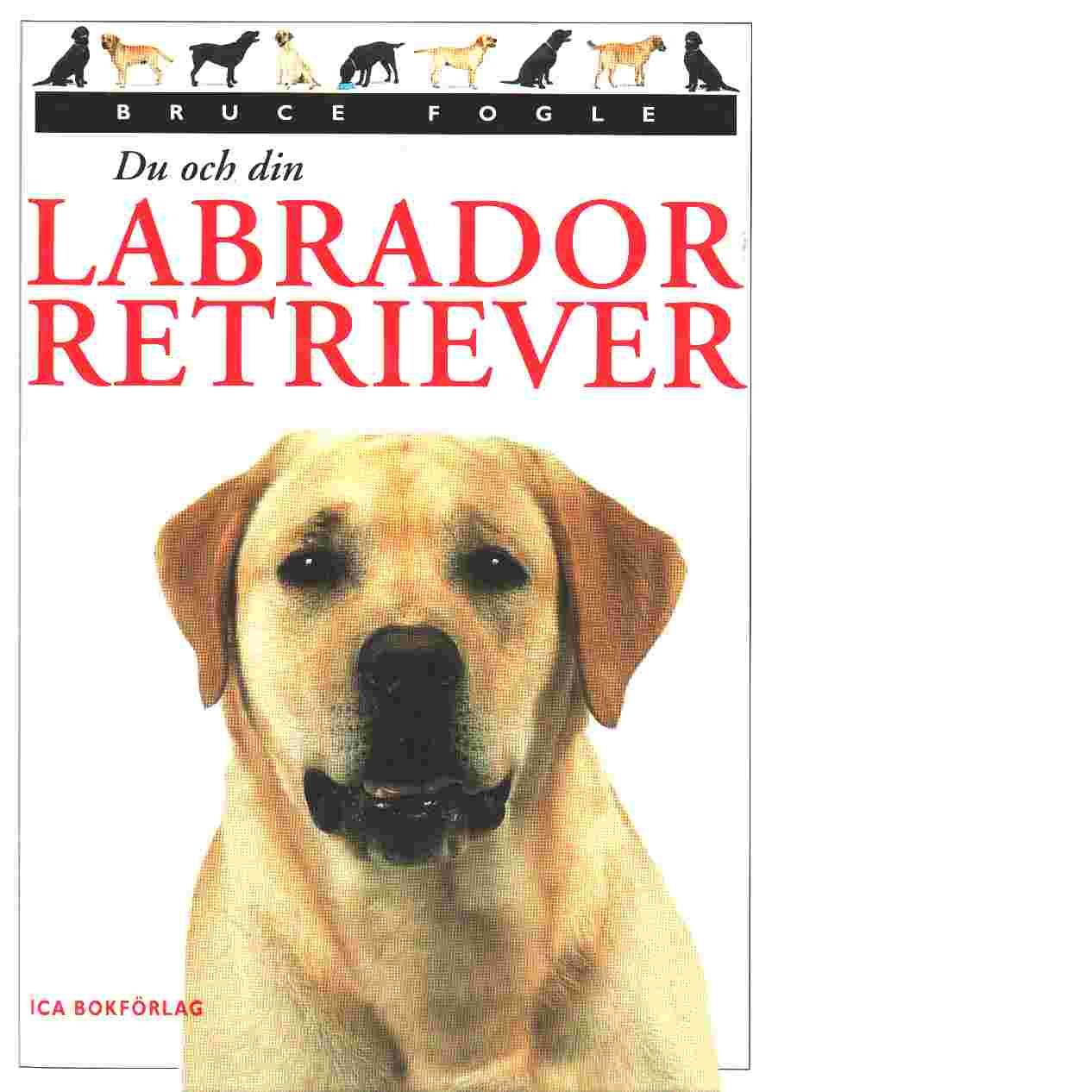 Du och din Labrador Retriever - Fogle, Bruce