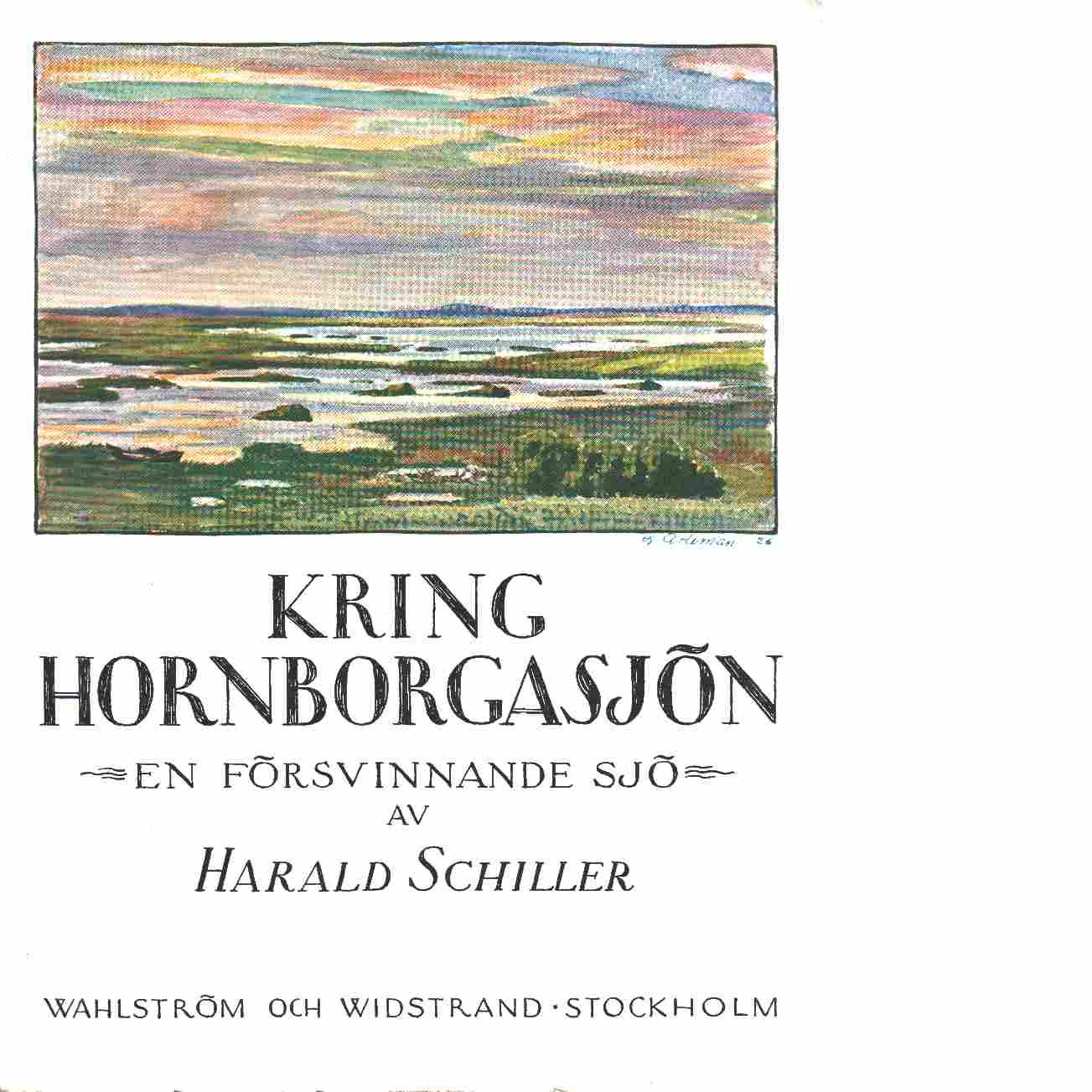 Kring Hornborgasjön : en försvinnande sjö - Schiller, Harald