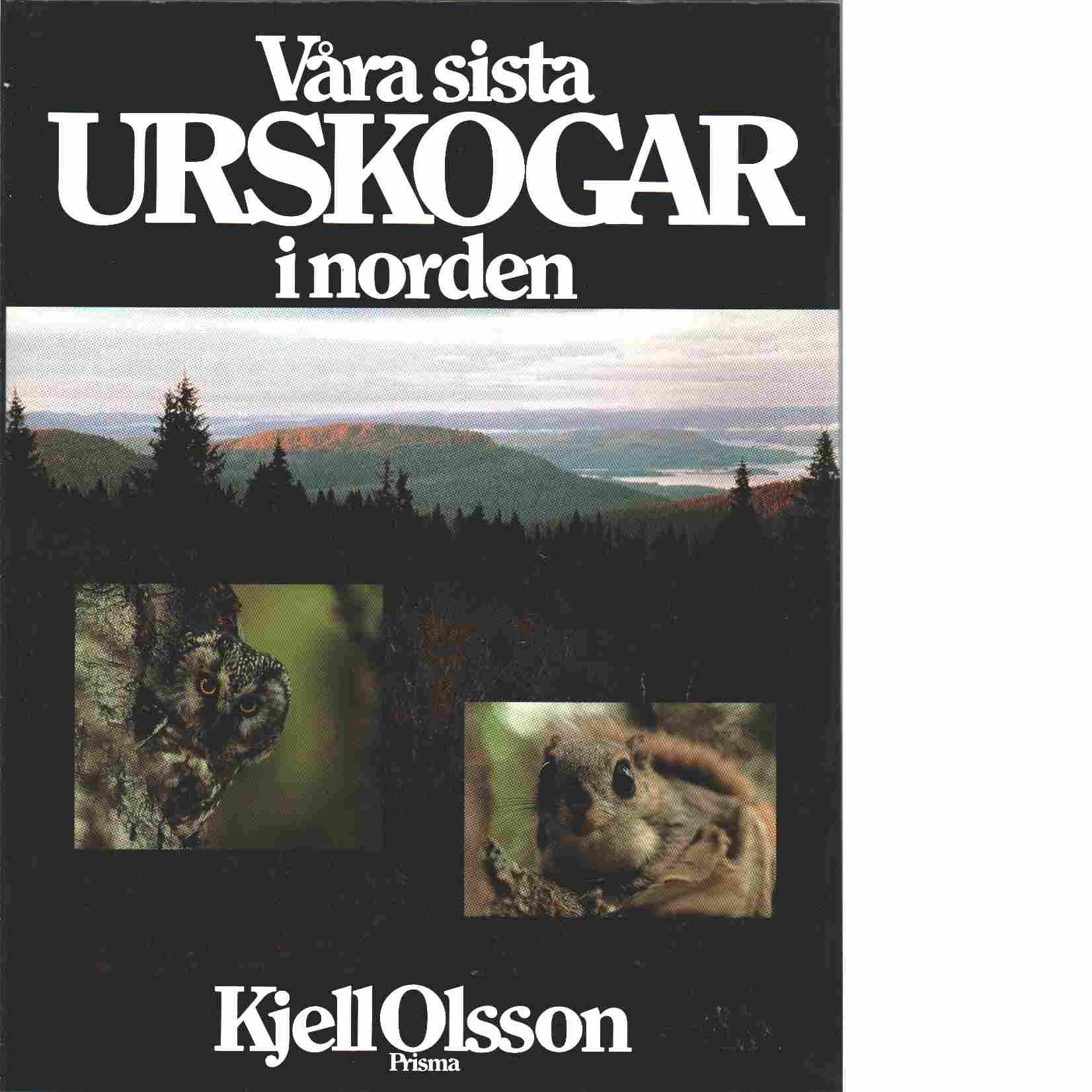 Våra sista urskogar i Norden - Olsson, Kjell