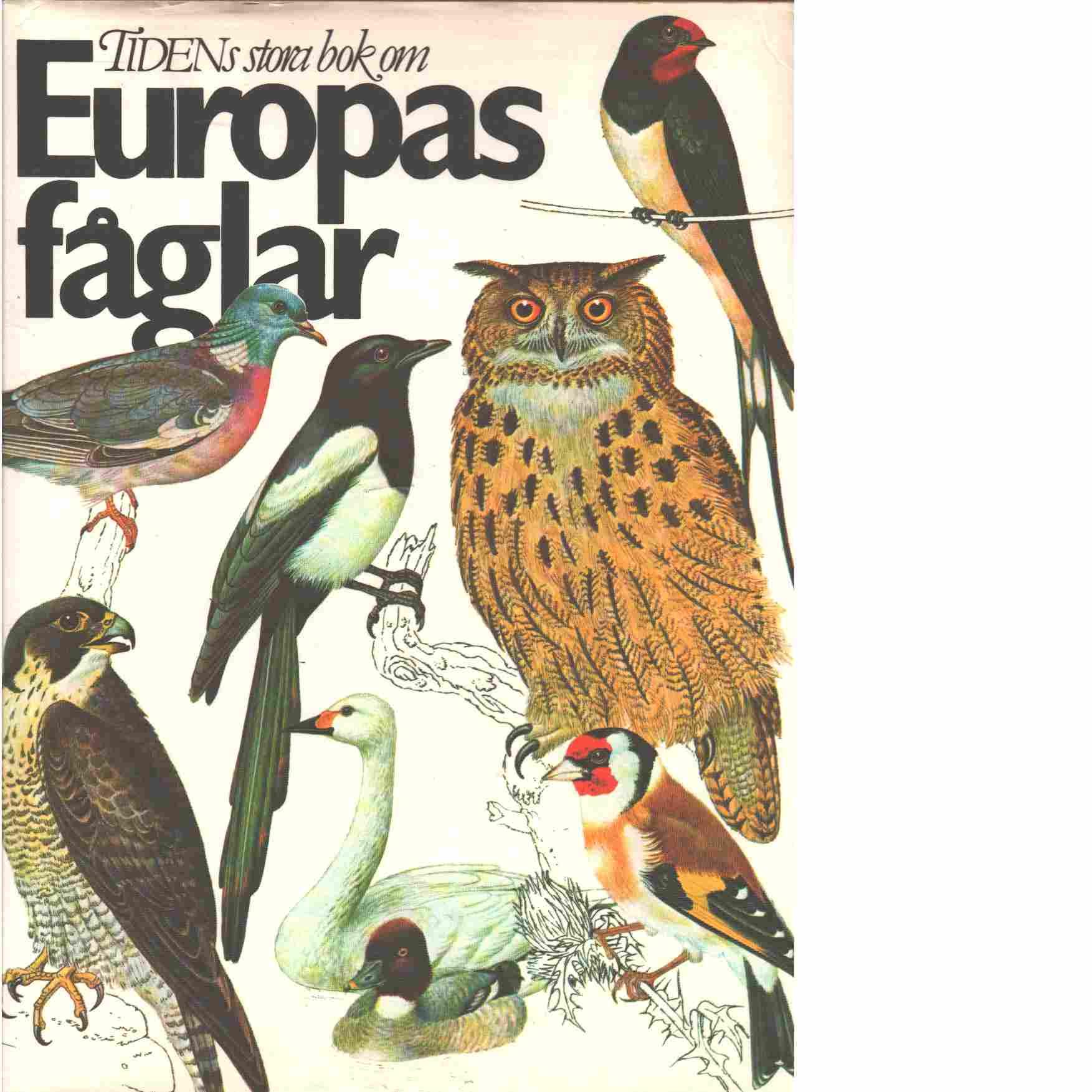 Tidens stora bok om Europas fåglar - Felix, Jir?i