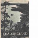 I Hälsingland - Holm, Martin/Mickelsson, Hilding/Viksten, Albert